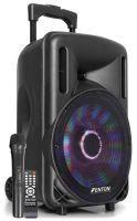 """Fenton FT10LED karaoke speaker 450W 10"""" met LED verlichting"""
