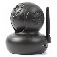 2e keus - SkyTronic IP Camera met Pan / Tilt en SD record